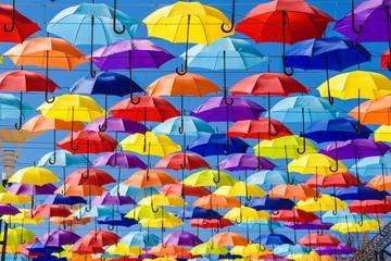 Multicolored umbrellas on the street