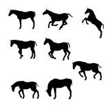 馬 シルエット - 202062397