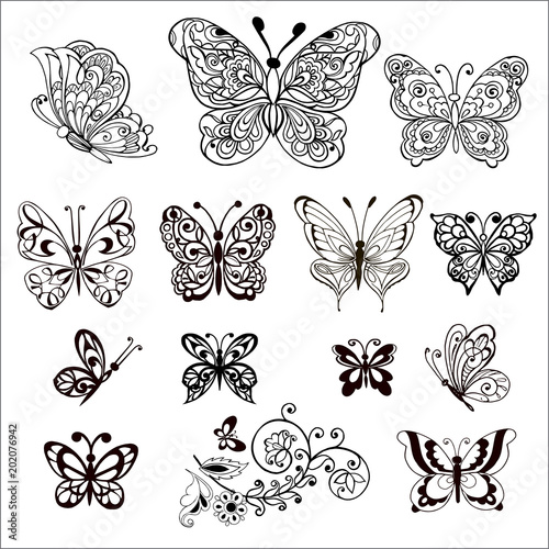 Hand drawn flowers and butterflies for the anti stress coloring page. Large Set of vector decorative butterflies. - 202076942