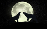 wolves howling at the full moon