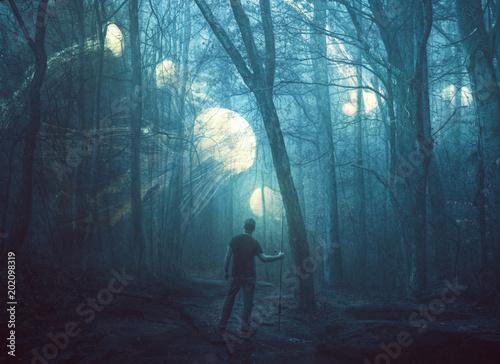 Fototapeta Jellyfish in a dark forest