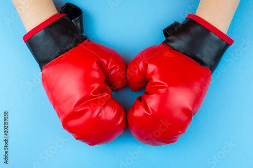 boxing gloves and paw