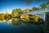 Famous Bow Bridge in New York City Central park with beautiful sunrise light over trees in fall. - 202192983