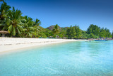 Tropical beach with amazing white sand - 202193971