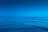 Underwater sea photo. Soft blue background image. - 202194321