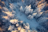 Top view to wood from bird's eye. Amazing winter scene. Christmas theme. Winter background - 202194541