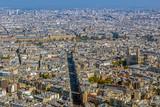 Panorama and aerial view of Paris - 202212511