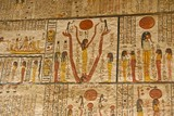 Hieroglyphs on the wall in King Tut's Tomb in the Valley of Kings in Luxor, Egypt - 202214540
