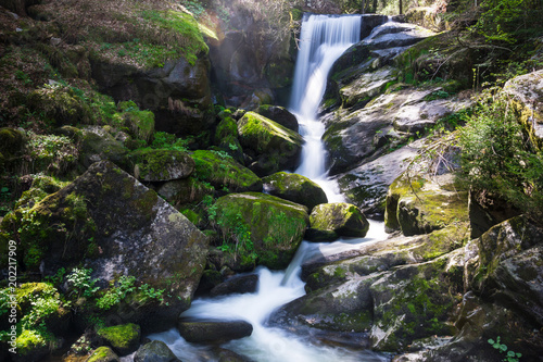 Germany, Triberg waterfalls in black forest nature landscape with sun - 202217909