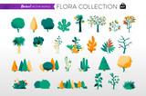 Collezione di alberi e piante da giardino - 202304382