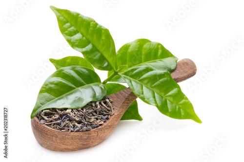 Zielona herbata liść łyżka odizolowywająca na białym tle.
