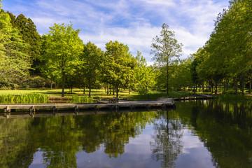 湖のある公園