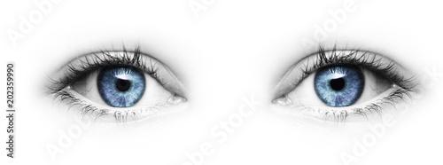 canvas print picture Blaue Augen