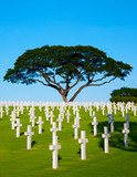 Manila American Cemetery and Memorial with beautiful daylight - 202360505