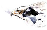 wild animals - 202367783