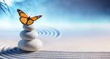 Butterfly On Spa Massage Stones In Zen Garden - 202400567