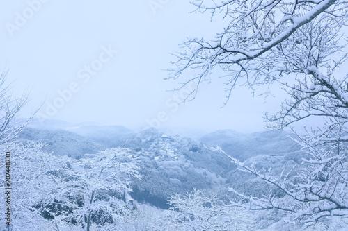 吉野山 冬景色