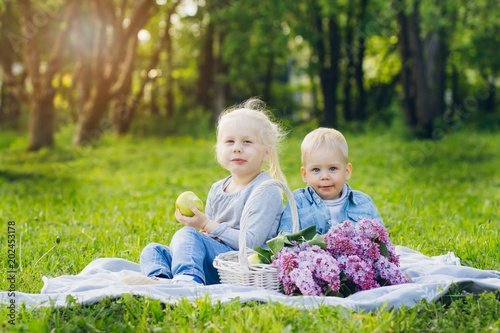 Brother and sister sitting on summer meadow
