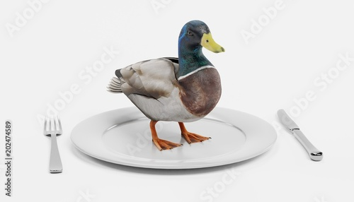 3D Render of Duck on Plate