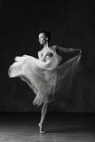 Young beautiful ballerina is posing in studio - 202475175
