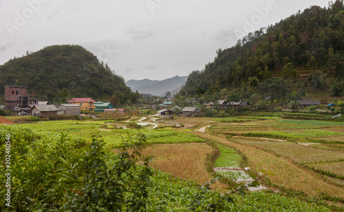 Vietnam. Amazing landscape with rice fields and mountains at one of Lao Cai province villages near Sapa.