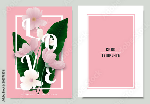 Greeting/invitation card template design, green Asplenium nidus, Birds Nest Fern with cosmos flowers on pink background - 202578356