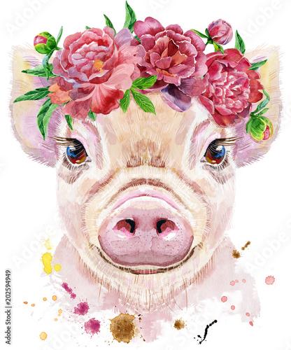 Watercolor portrait of mini pig