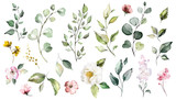 Big Set watercolor elements - wildflowers, herbs, leaf. collection garden and wild, forest herb, flowers, branches.  illustration isolated on white background, exotic  leaf. Botanic - 202605389