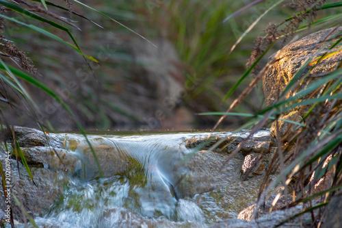 Brook waterfall