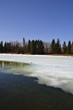 Partially Frozen Pond at Hawrelak Park