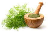 dried dill weed in the wooden mortar, with fresh dill weed isolated on white - 202709537