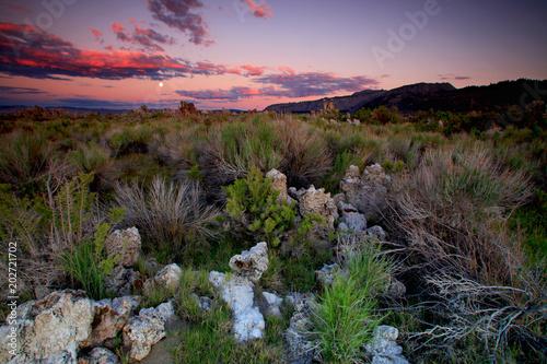 Fotobehang Lavendel Mono Lake, California