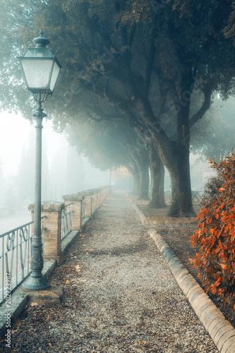 mglisty-ranek-jesieni-krajobraz-stary-parkowy-mglowy