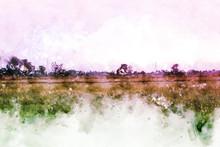 "Постер, картина, фотообои ""Beautiful field and tree landscape on watercolor painting background."""