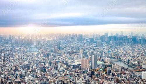 Plexiglas Tokio High angle view of Tokyo cityscape under moody sky