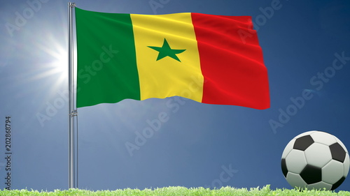 Flag of Senegal fluttering and a football rolls on the lawn, 3d rendering.