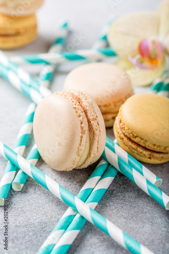 Fotobehang Macarons French assorted macarons on light gray concrete background. Holidays food concept.