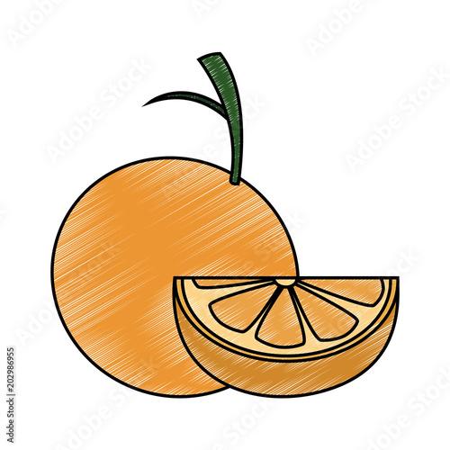 Pomarańczowy połówki rżnięty wektorowy ilustracyjny graficzny projekt