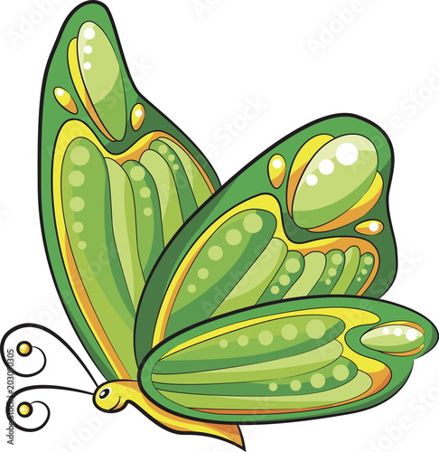 Green butterfly with expressively colored wings cartoon vector