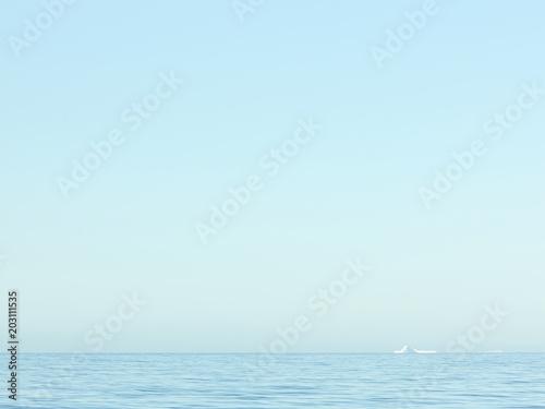 Plexiglas Lichtblauw Antarctica #3059