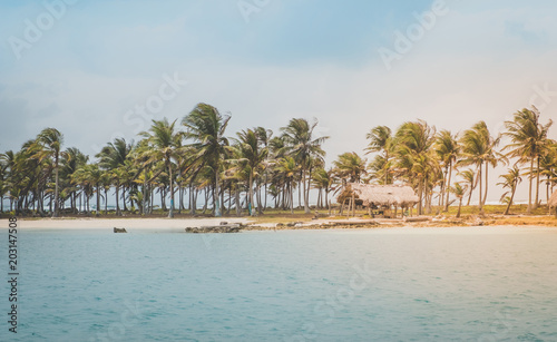 island beach  with palm trees and thatch hut