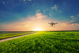drone quad copter on green corn field - 203172701