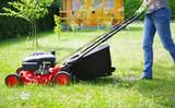 Gartenarbeit, Rasen mähen - 203207912