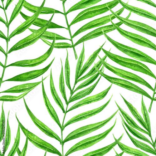wzor-lisci-palmowych-malowane-akwarela-element