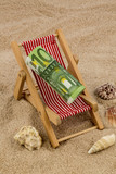 deck chair with euro bank note