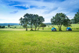 Camp site in the forest, campground at Tung Saleang Luang National Park, Thailand