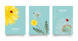 Floral vector set of posters, cards with dandelion. Vintage retro templates for flyers, invitation design. Spring or summer bright background with yellow flower, seed head and cute ladybug on blue