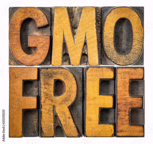 GMO free banner in wood type