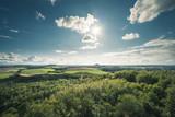 grüne Landschaft
