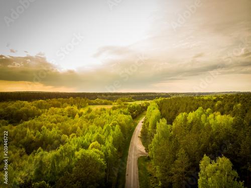 Plexiglas Beige Pine forest from above, summer season, forest road